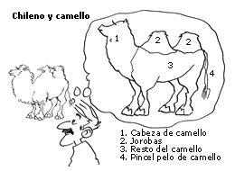 Chileno y camello.